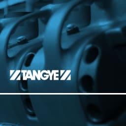 Tangye Logo